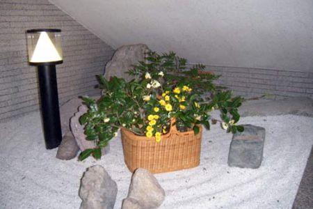 11月6日 お茶の花・黄色の菊・なんてん